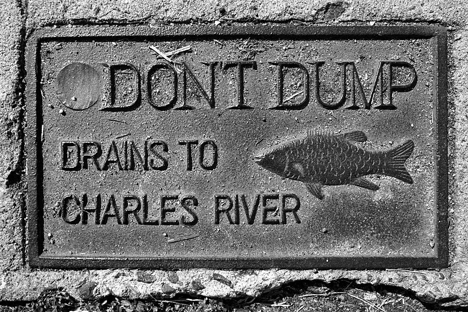 """Love that dirty water? A sidewalk inscription near Lowell House begs people not to dump toxic liquids into the rainwater grates. The Standells, who wrote the Boston anthem """"Dirty Water,"""" immortalized the place: """"Down by the banks of the river Charles/ Aw, that's what's happenin' baby/ That's where you'll find me/ Along with lovers, buggers and thieves/ Aw, but they're cool people."""" Rose Lincoln/Harvard Staff Photographer"""