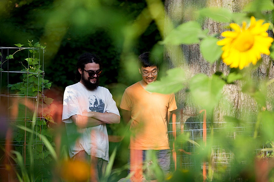 Bean plants and sunflowers frame Harvard Divinity School students Jim Robinson (left) and Seanan Fong.