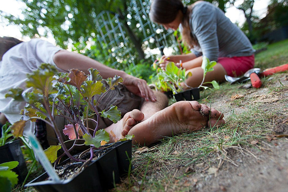 Au naturel! Jim Robinson lets his bare feet out in the Harvard Divinity School garden. Also pictured is Jennifer Wenz.