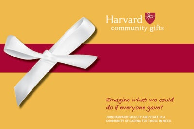 The Harvard Community Gifts annual campaign launches on Nov. 7. Harvard has established a user-friendly website where individuals can select their charity and donation amount.