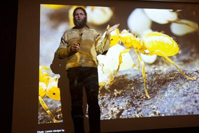 "A senior research fellow in ecology at Harvard Forest, Aaron Ellison discussed his new book, ""A Field Guide to the Ants of New England,"" to an enthusiastic crowd that included members of the Harvard community and local fans of ecology."