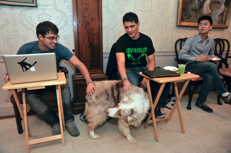 Gary Carlson '13 (left) and Paul Stavropoulos '13 take a moment from their laptops for some personal time with Rosie, one of two Leverett House canines who live in the master's residence.