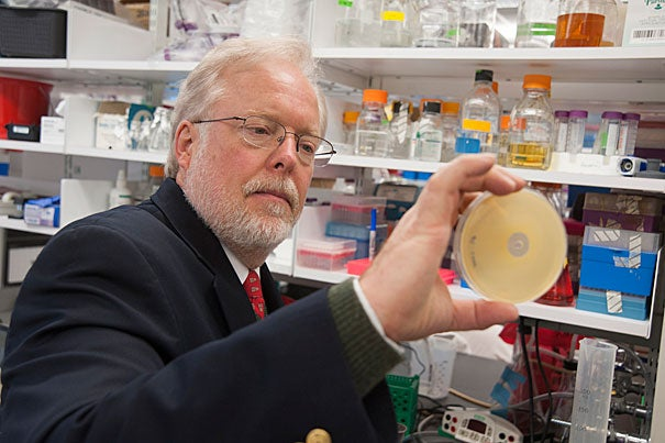 Michael Gilmore, who organized the Harvard-wide Program on Antibiotic Resistance and whose lab in May announced it had decoded the genome of the 12 known VRSA strains in the United States, said the group is taking a diversified approach to meet the challenge of antibiotic resistance.
