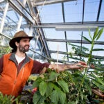 """""""What we're trying to get at is how adaptable corn is,"""" said Harvard graduate student Ethan Butler. """"The first step in that is to understand how well the crops react to the conditions they experience, or how sensitive they are to the 'good' and 'bad' days."""""""