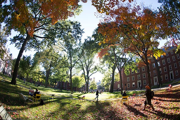 Harvard College has admitted 895 students to the Class of 2017 under the Early Action program, an increase of 16 percent over last year.