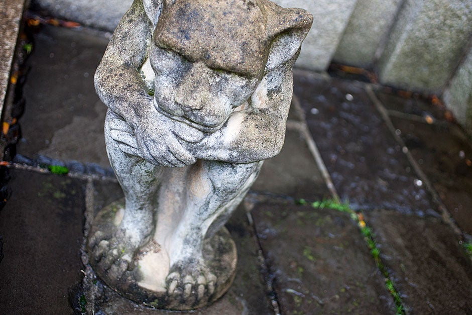 Gargoyles are said to protect people by scaring off any evil or harmful spirits. This one, purchased by Selesky, squats in the corner of the courtyard. Rose Lincoln/Harvard Staff Photographer