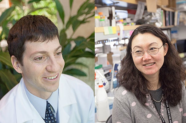 Matthew Davids, an instructor in medicine at Harvard Medical School and Harvard-affiliated Dana-Farber Cancer Institute, and Xiu-Ping Wang, an assistant professor of developmental biology at the Harvard School of Dental Medicine, are recipients of Shore Fellowships, which help junior faculty balance professional responsibilities with household duties.