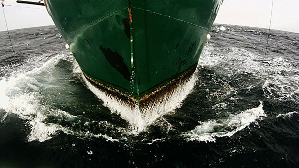 """Lucien Castaing-Taylor and Verena Paravel, both at Harvard's Sensory Ethnography Lab, are screening their co-directed """"Leviathan"""" (2012), a wordless, sensual, and phantasmagoric portrait of commercial fishing aboard a trawler out of New Bedford, Mass., this week at the Berlin International Film Festival."""