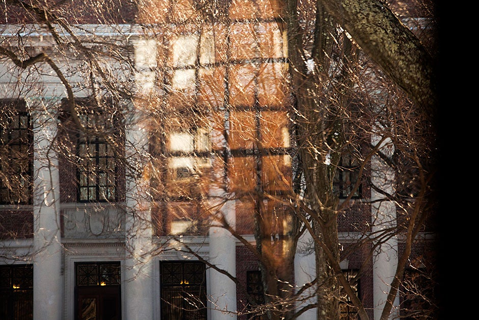 From Memorial Church, window frames, columns, tree limbs, and reflections blend together by Widener Library in Harvard Yard.