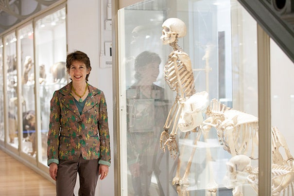 """Marlene Zuk: """"There is no 'progress' in evolution. No living thing is trying to get anywhere. And humans are not at the pinnacle of the evolutionary ladder."""""""