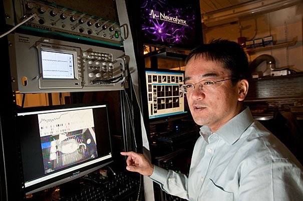 "A research team led by Naoshige Uchida, associate professor of molecular and cellular biology, found that rats averaged how much benefit they received over as many as five trials. When their brains were impaired in one region, however, the rats based their actions solely on the prior trial. ""This is a new framework to think about decision-making,"" Uchida said."