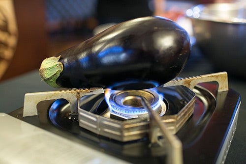 Eggplant_500