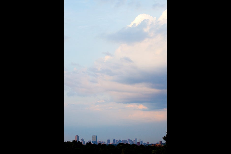 Shades of indigo fill the sky at Peter's Hill in the Arboretum, where the view of Boston is spectacular. Rose Lincoln/Harvard Staff Photographer