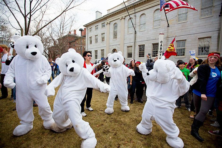 PfoHo polar bears dance in the yard during Housing Day. Rose Lincoln/Harvard Staff Photographer