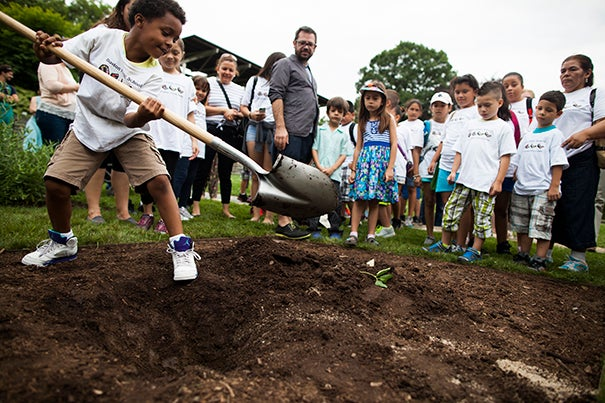 Pedro Reyes observes students from the Spanish Heritage Academy who pitched in to plant the Arboretum's newest shrub, a Japanese hydrangea, with a shovel made from decommissioned firearms; also on hand to help were Arboretum staffers, including Brendan McCarthy (second photo), a horticultural technologist.