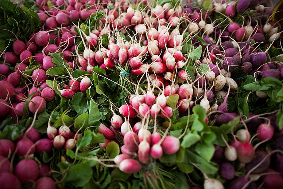 Bulk up a salad with colorful radishes.