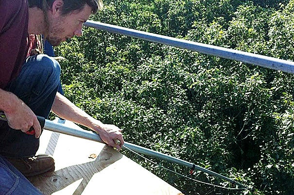 Harvard's Trevor Keenan (pictured) and Andrew Richardson have found that forests around the world are becoming more efficient with water usage than expected.