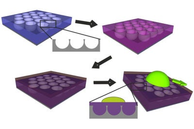 Researchers create the ultraslippery coating by making a glass honeycomb-like structure with craters (left) and coating it with a Teflon-like chemical (purple) that binds to the honeycomb cells to form a stable liquid film. That film repels droplets of both water and oily liquids (right). Because it's a liquid, it flows, which helps the coating repair itself when damaged.