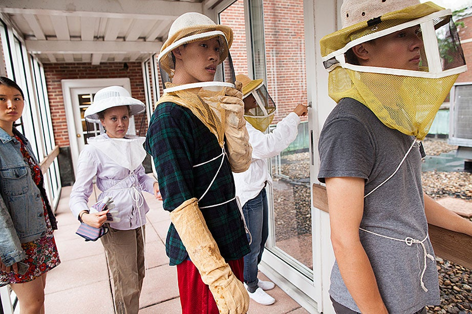 Alice Han '16 (from left), Amalee Beattie '17, Austin Chen '16, Li Murphy '15, and Alistair Debling '16 don protective clothing to enter the hive.