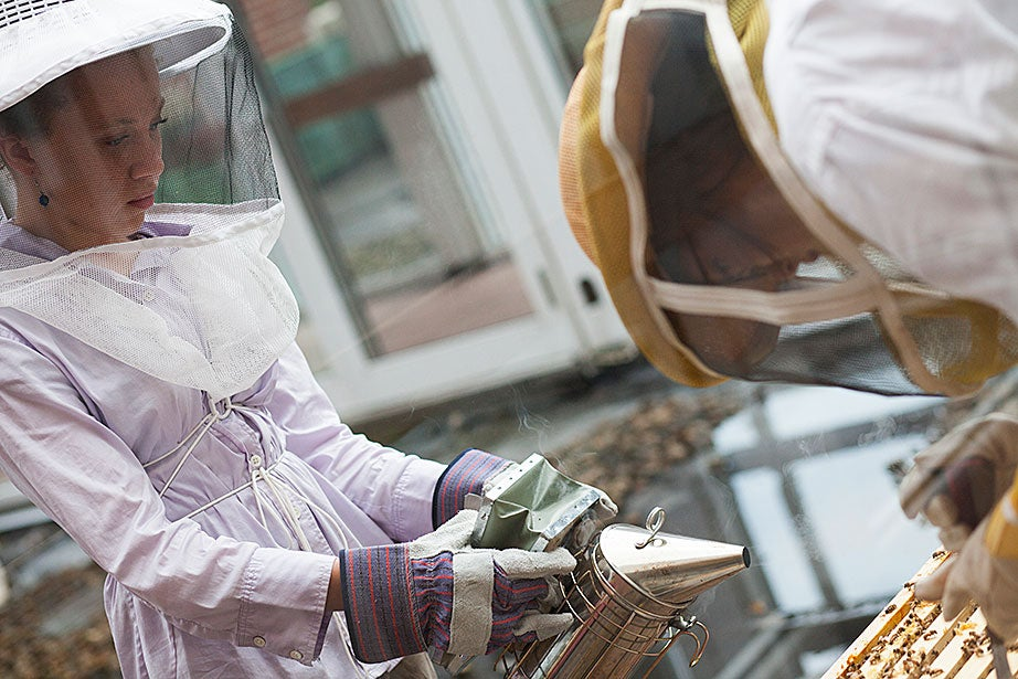 Amalee Beattie '17 (left) adds smoke, which calms the bees, to the hive as Li Murphy '15 opens it.