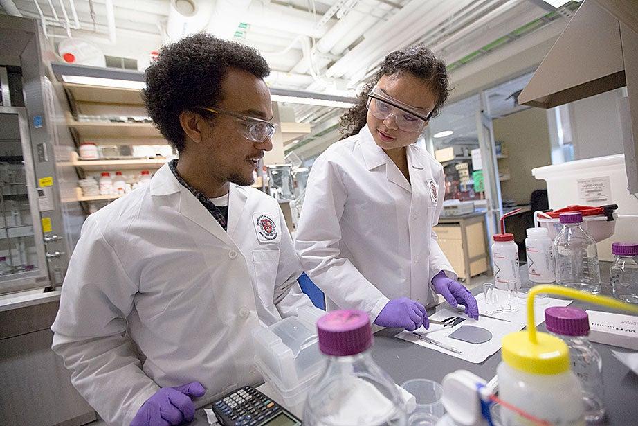 Graduate student Daniel Bediako (left) and Zamyla Chan '14 cut a silicone sample in the Nocera Lab.
