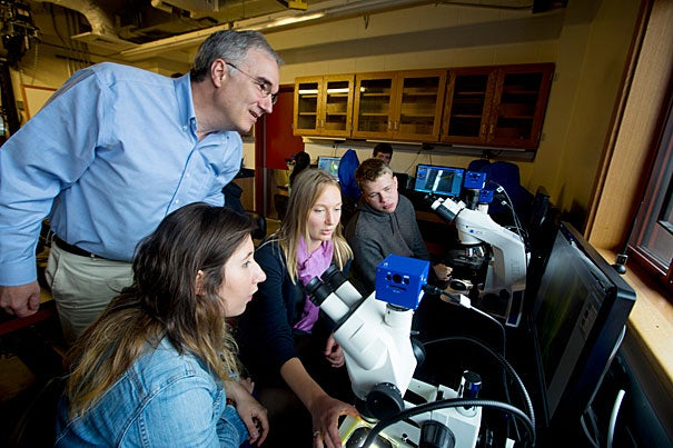 """""""This class is great in the sense that you feel like you're placed in Darwin's shoes,"""" said Ioana Dobre '17 (left, photo 1) with Anna Lea Albright '17 and Aaron Siegel '17, all students in Arnold Arboretum Director Ned Friedman's (standing) freshman seminar. Eamon Corbett '17 peers through a microscope (photo 2) at a specimen that Darwin once looked at, while Siegel scopes out an insectivorous plant (photo 3)."""