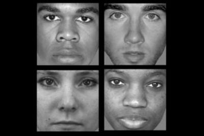 Harvard researchers have found a brain region in which patterns of neural activity change when people look at black and white faces, and at male and female faces.