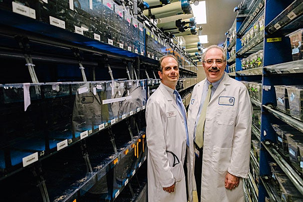 """The Harvard Stem Cell Institute has carried a discovery from the lab bench to the clinic. """"The fact that we were able to translate someone's scientific discovery from down the hall into a patient just a few hundred yards away is the beauty of working here,"""" said HSCI-affiliated faculty member Corey Cutler (left), pictured with Leonard Zon, chair of the HSCI."""