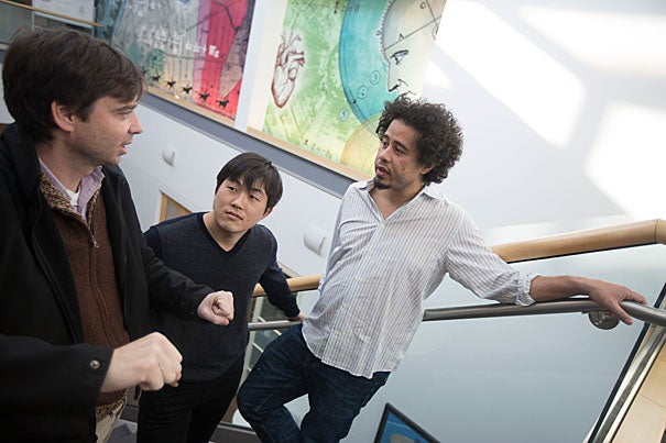 Bence Ölveczky (from left), Yohsuke Miyamoto, and Maurice Smith suggest in a new study that variability in motor function is a key feature of the nervous system that helps lead to better ways to perform a particular action.