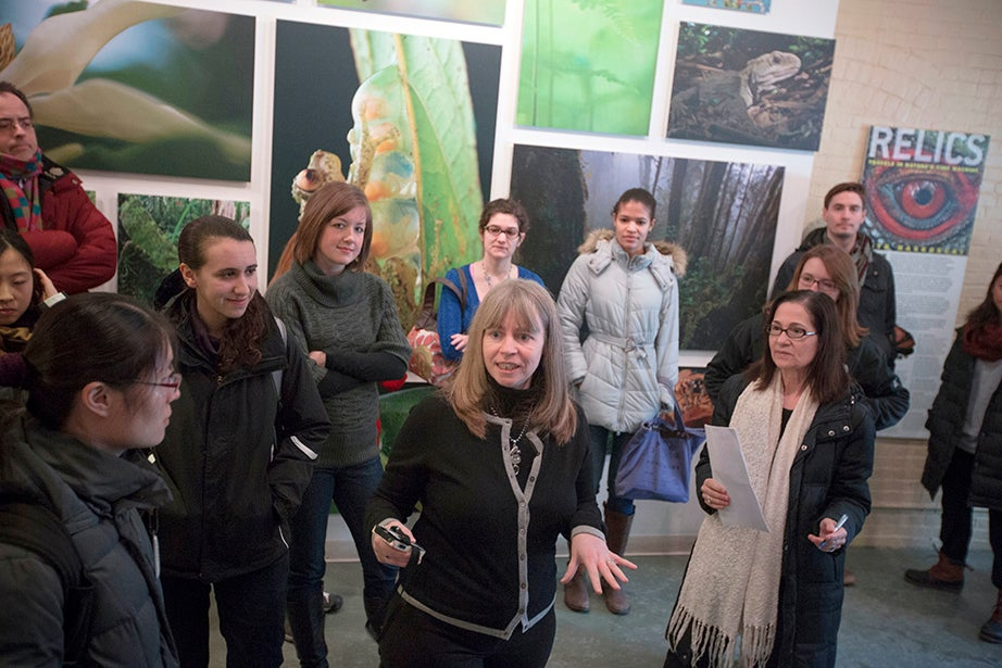 Harvard Museums of Science and Culture Executive Director Jane Pickering (center) welcomes students to a behind-the-scenes tour of the world-renowned research museums at the Harvard Museum of Natural History. Kris Snibbe/Harvard Staff Photographer
