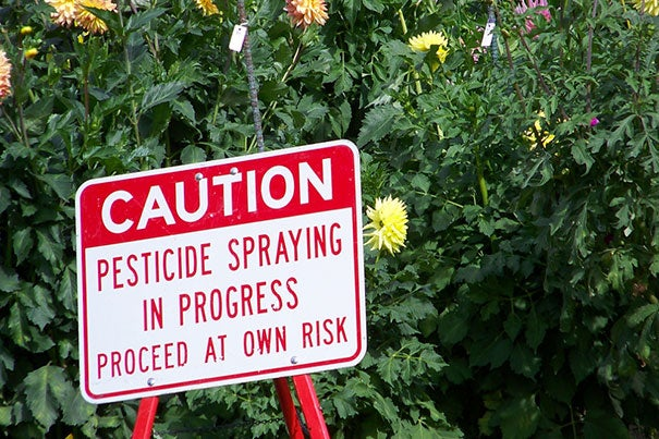A recent study indicates that children's exposure to certain chemicals, including some pesticides, may trigger disabilities such as autism, attention-deficit hyperactivity disorder, and dyslexia.