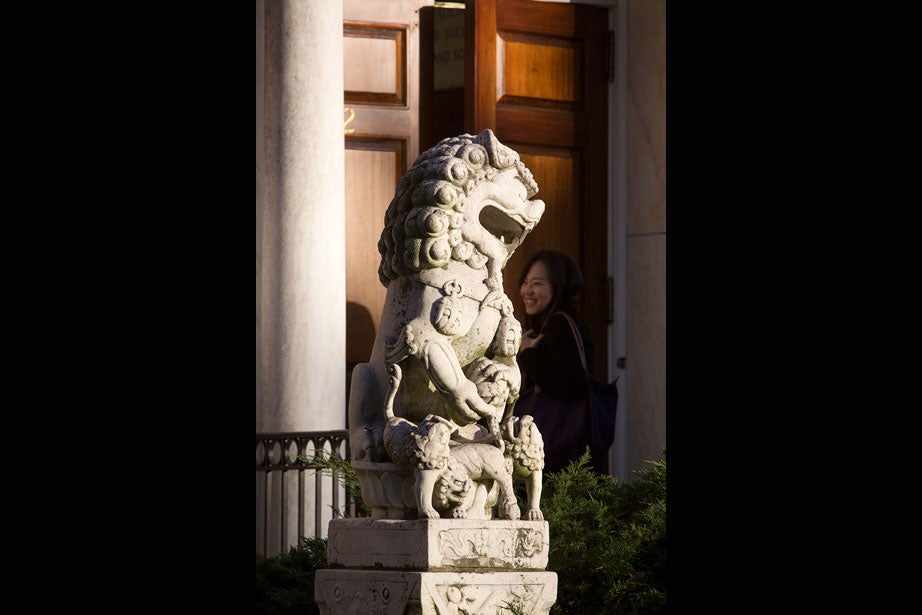 Stone lions frame the entrance to the Harvard-Yenching Library.