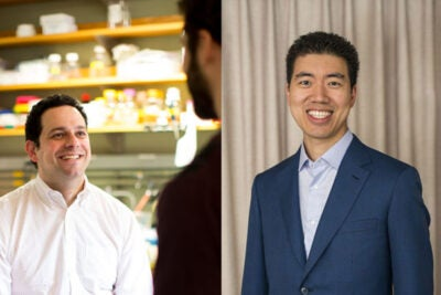 Alan Saghatelian (left), associate professor of chemistry and chemical biology, and David Liu, professor of chemistry and chemical biology, have discovered a compound that inhibits insulin-degrading enzyme from breaking down insulin in the body.