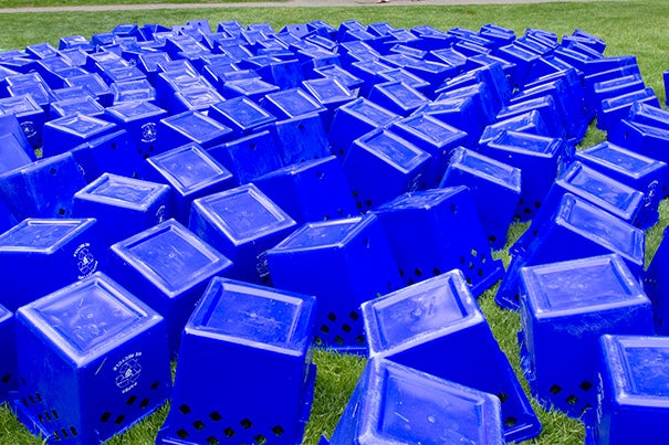 Harvard placed 109 recycling bins and receptacles around the Yard to collect waste.