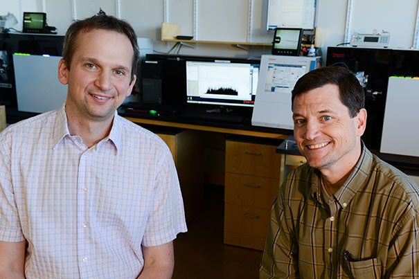 Postdoctoral researcher Michael Weekes (left), an expert in infectious disease, worked with Steven Gygi, professor of cell biology at Harvard Medical School, using a mass spectrometer (background) to explore how cytomegalovirus, or CMV, invades the immune system. CMV contains about 200 genes as opposed to HIV's 18, making it one of the most widespread pathogens.