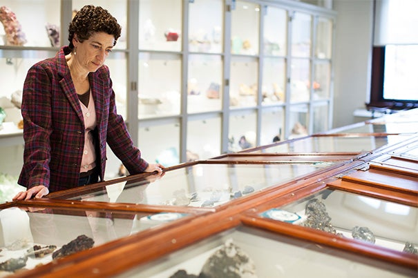 A novella co-authored by Professor Naomi Oreskes imagines the long-term consequences of inaction on climate change. Oreskes is at the Harvard Museum of Natural History.