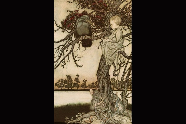 """Illustrator Arthur Rackham's drawings for J.M. Barrie's 1906 book """"Peter Pan in Kensington Gardens"""" are part of the Houghton Library collection at Harvard. Here Peter Pan puts his strange case before """"old Solomon Caw"""" (photo 1); the fairies have a """"tiffs with the birds"""" (photo 2); and Maimie (photo 3) is heard by the chrysanthemum."""