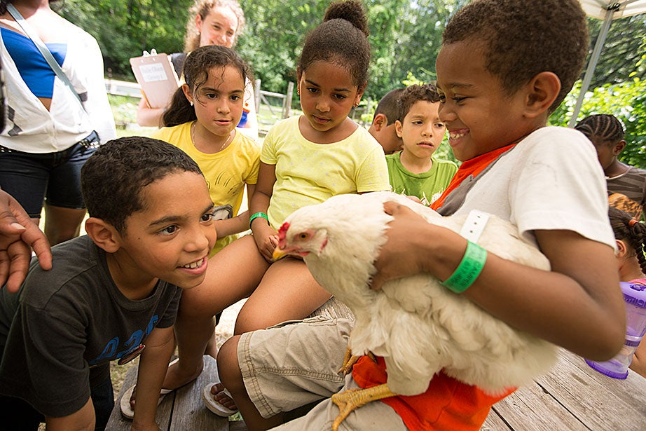 Hands-on enrichment activities empower youth like Andy Nova, 8, who dared to come face-to-face with a chicken held by Jayden Melo, 7.