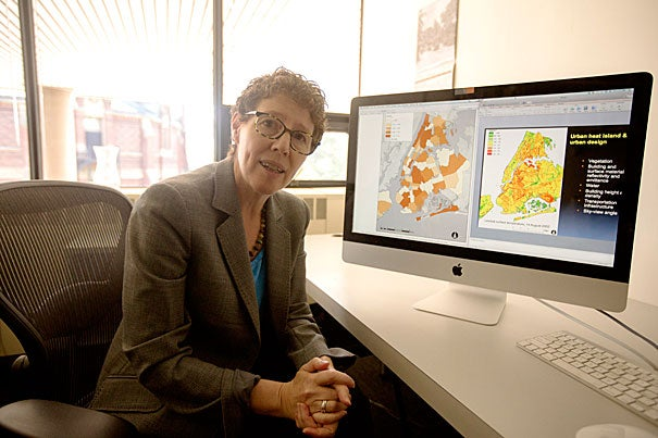 """Everyone in the design community was galvanized by Sandy and we absolutely need to work on coastal solutions, but we also have to be mindful that sea level isn't the only threat,"" said Joyce Klein Rosenthal, an assistant professor of urban design, who says that heat waves also have deadly potential."
