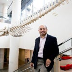 A new study, co-authored by Erik Otárola-Castillo, suggests that whale bones have a very specific purpose.