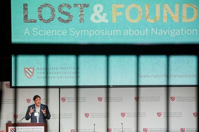 On Friday, leaders in the field of navigation, including Donner Professor of Science John Huth, converged on Radcliffe's annual science symposium to discuss findings in everything from brain science to animal navigation to the psychology of how a lost person behaves — which can give rescuers important cues about where to look.