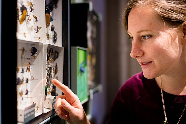 Sarah Kocher is the co-author of a paper on eusociality, which arises when a species, like ants or bees, give up some of their own reproductive rights to help raise the offspring of another.