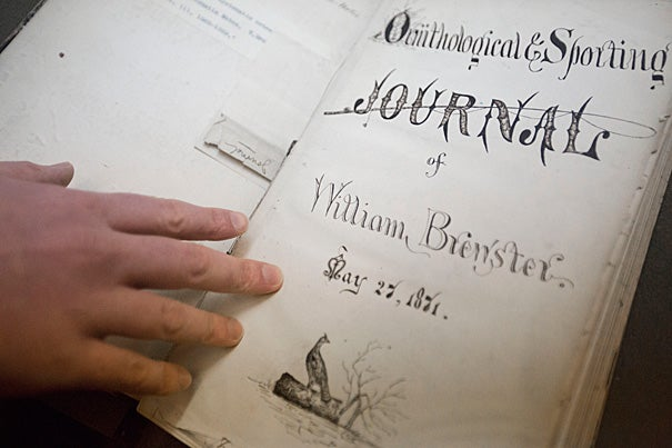 Thousands of pages of diaries and journals by ornithologist William Brewster are being turned into a digital copy that is both searchable and accurate, with the help of Constance Rinaldo (photo 2), a librarian at the Museum of Comparative Zoology's Ernst Mayr Library, where Brewster's writings are held.