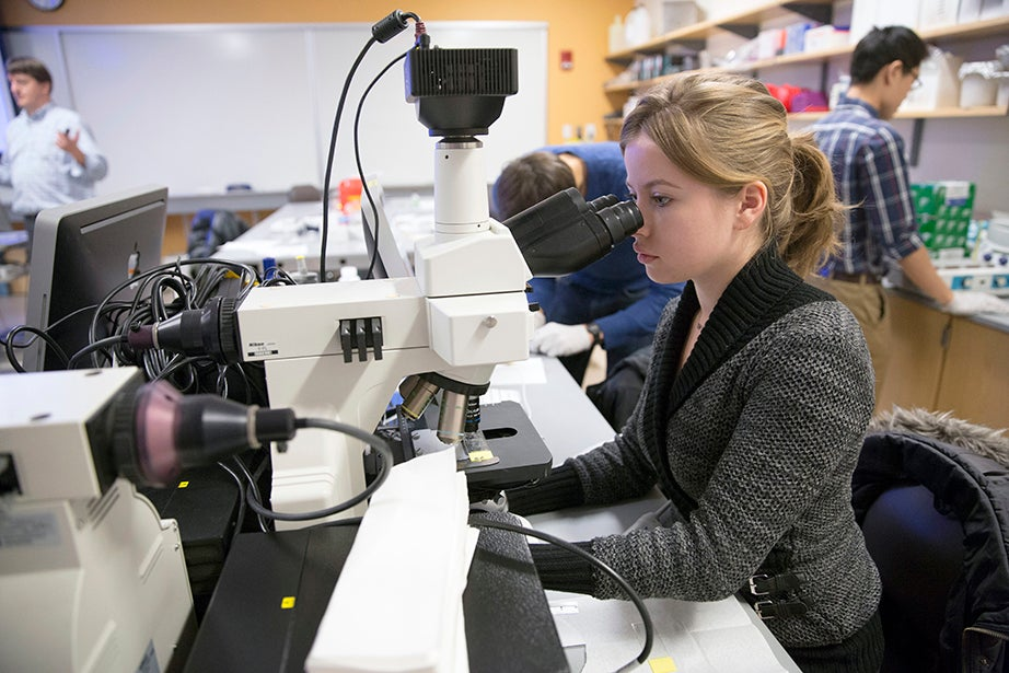 Viktoria Betin of GSAS practices using a microscope during the MSI Graduate Consortium. Kris Snibbe/Harvard Staff Photographer