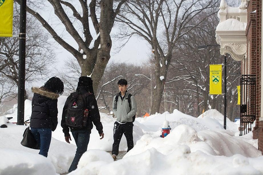 Students walk by Leverett House. Kris Snibbe/Harvard Staff Photographer