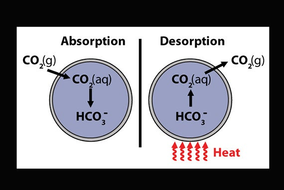 Carbon_absorption-desorption_650_570x381