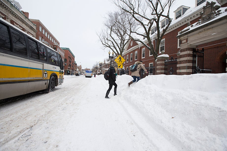 Students scale large snow piles along Massachusetts Avenue. Rose Lincoln/Harvard Staff Photographer
