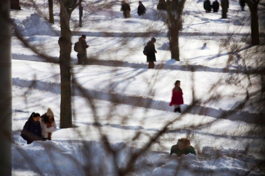 Students walk to class in the snow of Harvard Yard. Stephanie Mitchell/Harvard Staff Photographer