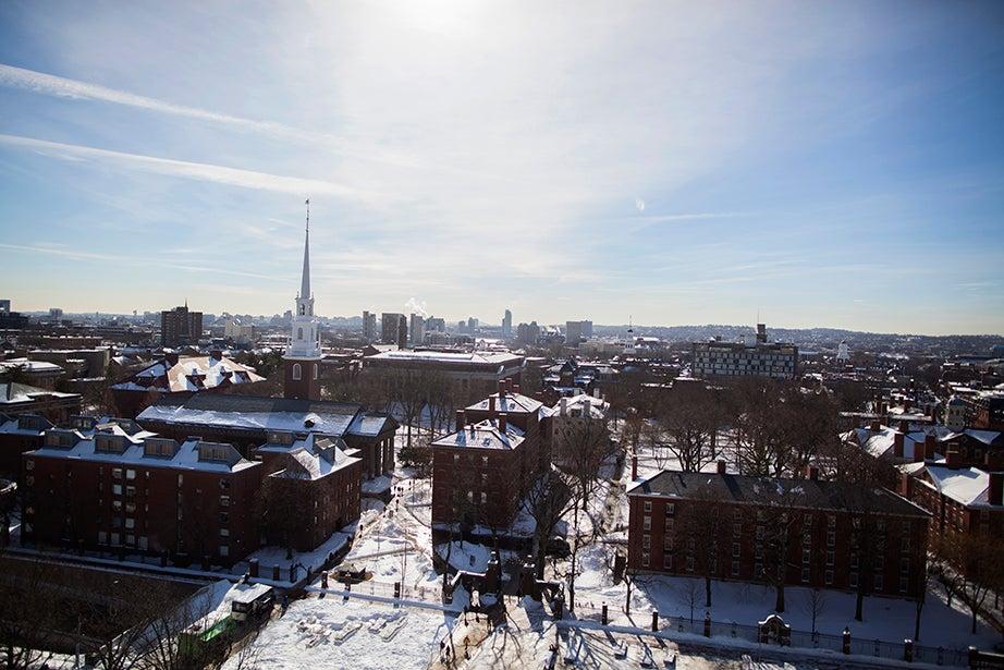 An overview of Harvard Yard after a snowfall. Stephanie Mitchell/Harvard Staff Photographer