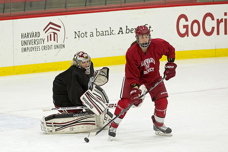 Forward Jess Harvey '16 looks to pass a loose puck in front of goalie Brianna Laing '17. Jon Chase/Harvard Staff Photographer